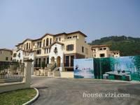 纯别墅降价40万出售单价8000元一平方别墅