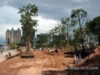 方直城市时代 园林实拍