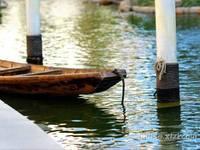 东湖大产业 稀有别墅区-东方威尼斯 高档别墅区300平超大面积 绿化好
