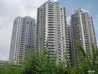 东平 最具性价比 满五年 3房