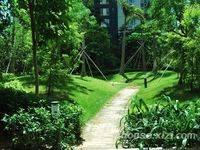 麒麟山森林公园旁:小金口金都雅苑精装3房出露台出售95万