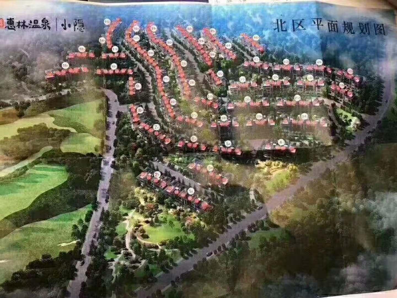 惠林汤泉精装小别墅 天然养生温泉 花园 返租金