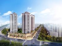 陈江核心 首付25万买106平大三房 轻轨口物业