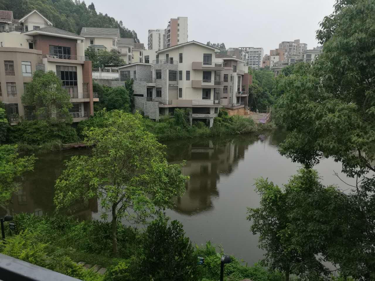 万林湖临湖边别墅,带前后多个花园,仅500万,市区中心位置
