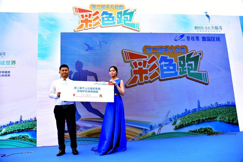碧桂园太东天樾湾代表现场活动参与者进行公益捐款