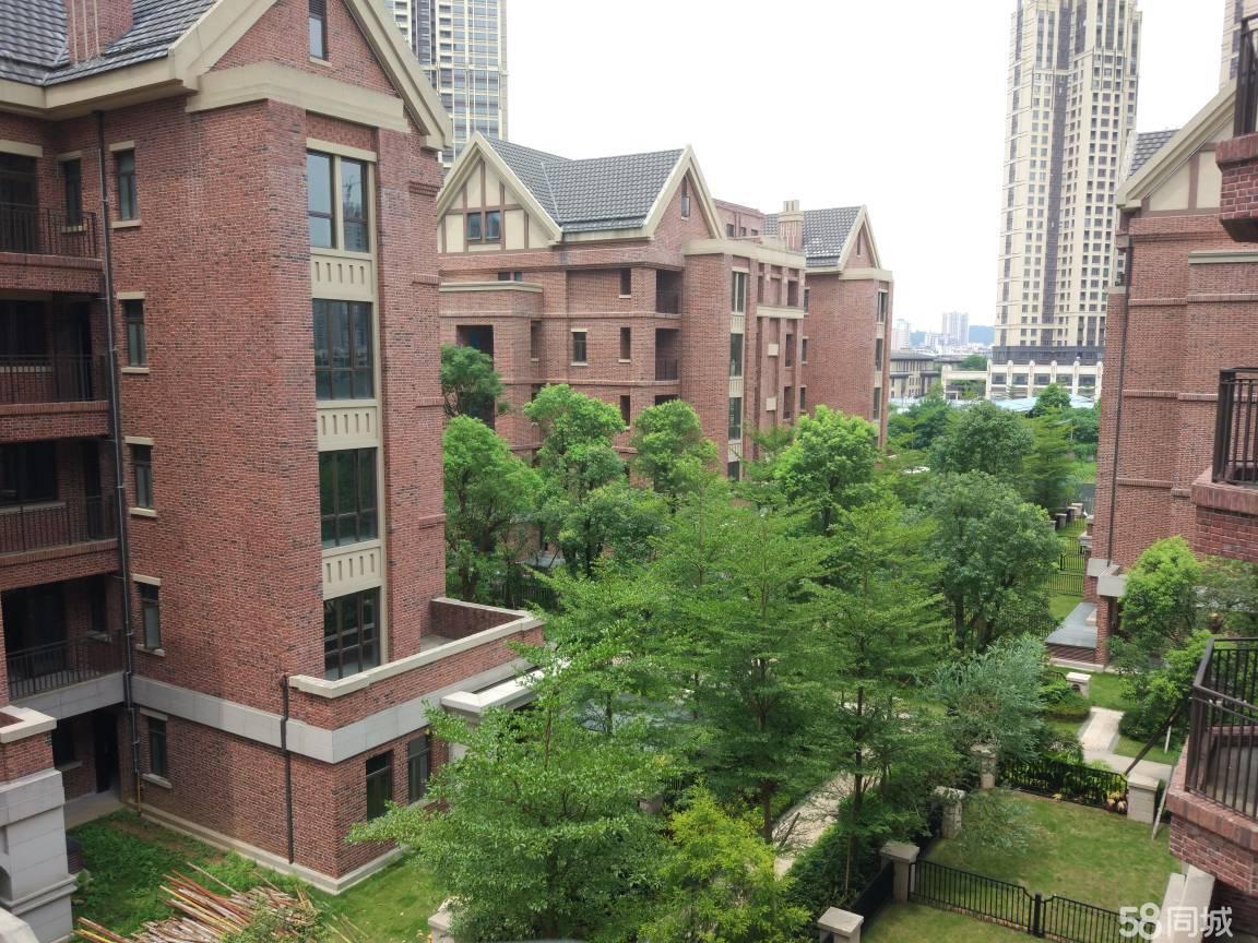 中洲中央公园豪华专利大平墅,带120平私家花园赠地下室,诚意低价出售