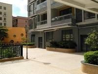 江北后花园,阳光新苑2加1房出租,拎包即住。