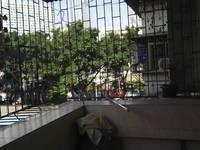 强兴楼 斑樟湖路二横街2房1厅出售