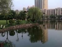 城市花园4栋502房出租