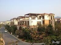佳兆业东江新城,位于博罗中心区,罗阳中心小学,博罗中学,江南森林公园