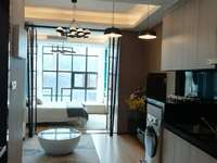 惠州新汽车总站附近全新精装修小复式公寓实价出售 首付低至13万还可以带租约