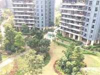 名流印象一期8楼,119平方,可改四房,精装修,目前整个小区性价比最高一套,