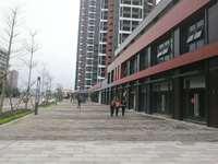 出售中海水岸城花园51平米48万商铺