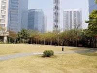 笋盘:高端住宅城市花园142平米3房 精装保养好 小区环境绿化高仅售330万