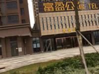 富盈公馆位于鹿江边 视野一线江景朝南 鹿江边是湿地