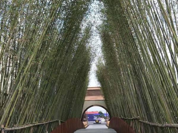 高铁北站一公里项目,领地阑台府 汤泉高尔夫近在咫尺,教育大盘