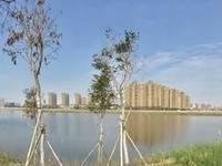 城区最火楼盘 富盈公馆 特价最低8字头 楼下湿地鹿江公园 席
