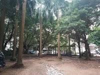 港惠新天地旁五星聚豪园 标准四房 双学位 均价仅9200元