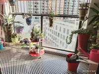 美地花园城三期精装修75平两房急售80万!朝南,证满2年税费低,首付25万搞定!