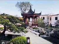 你想买中式四合苑吗,
