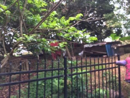 总面积900平方,前后花园700平方,有集体证。买到就是赚到