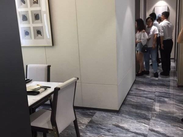 折扣提示:惠州北站旁 一手楼盘 免佣带看选楼层 折后单价请扣我。