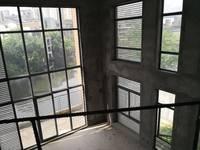 万林湖邻湖独栋别墅 东南向,9米中空客厅 带电梯位 视野佳 带花园和多个露台