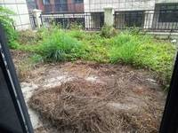 终极笋盘! 保利山水城联排别墅 使用4层 带80平花园 使用面积高达500平