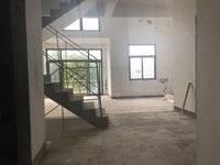 现代风别墅,全明地下室,视野开阔可看湖,全新楼龄,江北雅居乐白鹭湖