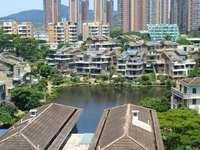 万林湖毛坯电梯双拼小别墅,实用率超400平米以上,三面采光送花园和双车位证满5年
