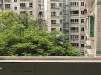 江北兴业家园 中心位置 电梯学区房 116平米 急售117万