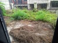 单价7字头 保利山水城联排别墅 使用4层带80平花园 使用面积500平