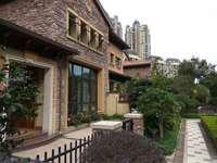 金山湖珑湖湾稀缺带电梯井双拼别墅低于市场价几十万业主急售