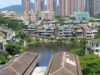 万林湖电梯叠加双拼别墅,看湖景东南向带超大私家花园和露台,三面采光无遮挡,急售