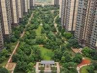 中洲天御117平150万毛坯房南北通透视野好过户费便宜