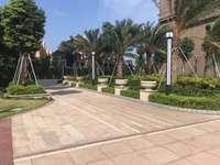 美丽洲花园高层3 1房,南北通透朝花园,鹿江公园旁