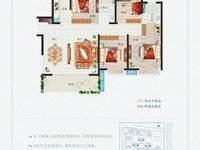 新力城 一手新房 免中介费代理 东江新城最大的社区