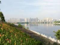 东平长湖苑二期 沿江社区 三层大复式 带超大露台 学位房 直接入住