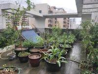 榕景华庭满五唯一,顶楼复式5房2厅,带100平天台花园