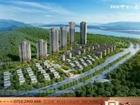 项目:碧桂园 十里江南,毗邻东江,背靠原生态山系,山环水养,单价8800元