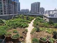 金宝江畔花园 3 1房精装修 户型好采光足实图 看房方便85万出售