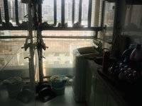 出租锦源国际1室1厅1卫48平米1500元/月住宅