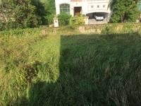 2亩超级大花园,可挖泳池,浅水湾独栋别墅,位置超好。江北雅居乐白鹭湖