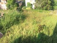 超大2亩大花园,可挖泳池,浅水湾独栋别墅,江北雅居乐白鹭湖