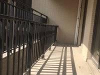 金山湖中洲天御118平大客厅大阳台160万旁边42小学