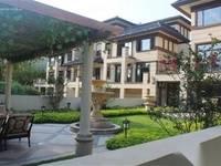 温泉入户别墅 使用面积430平 私家花园130平 惠林温泉