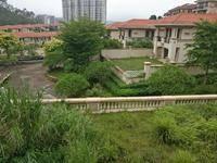 浅水湾C区独栋别墅 业主诚意出售 485万 雅居乐白鹭湖!