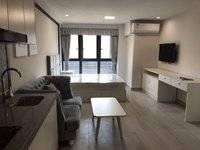 麦地房 李瑞麟和五中 都市公寓 临港惠沃尔玛 繁华地段