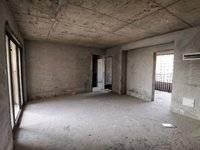 金山湖中洲天御二期 5房 南北通透 税费低 7米大客厅 看房有钥匙