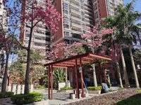 金山湖 公园门口 精装四房 165万送全屋家私电 带十一小学位